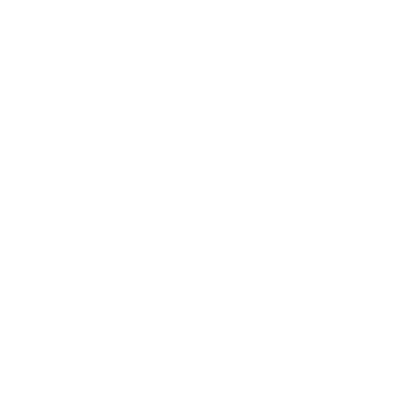 20 years in business
